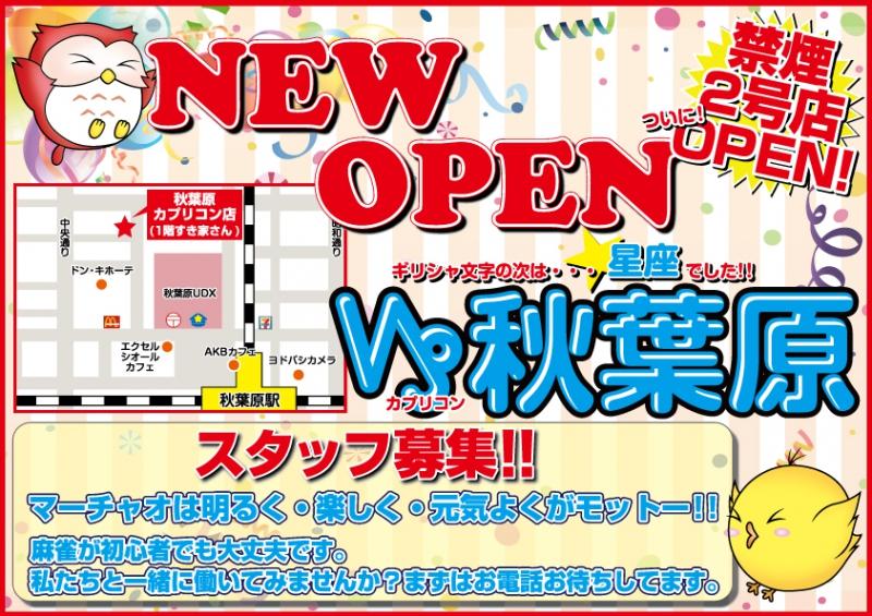 雀荘 マーチャオカプリコン秋葉原禁煙店の店舗写真